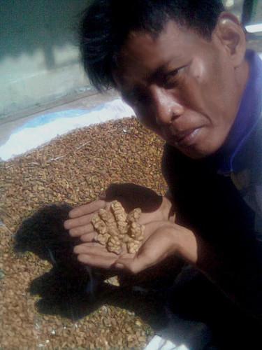 café civeta.jpg