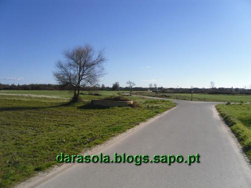 SAM_5474.JPG