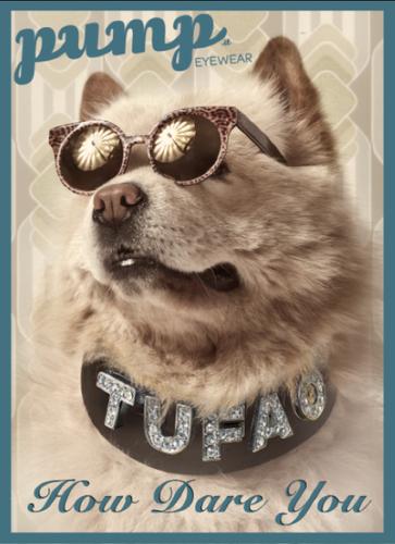 Tufão2015 (8).png