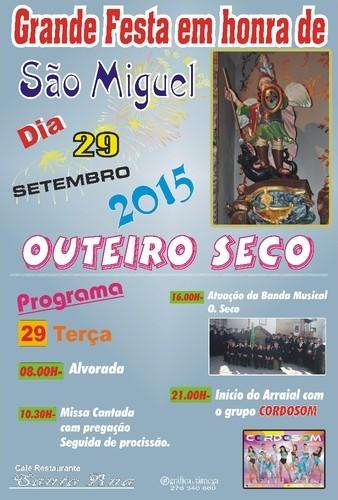 cartaz S. miguel 2015.jpeg