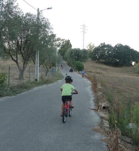 bicicletas 8 (2).JPG