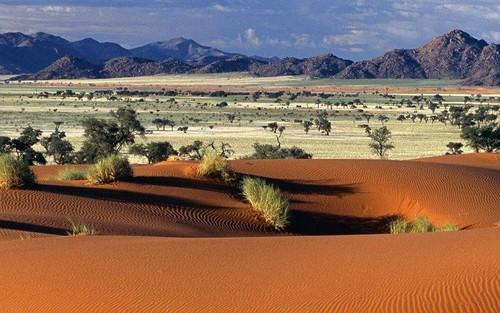 deserto3.jpg