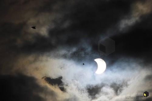 Eclispe FVeloso.jpg