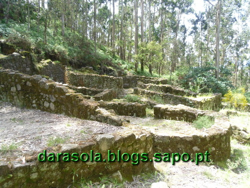 Arriba_Fossil_Esposende_24.JPG