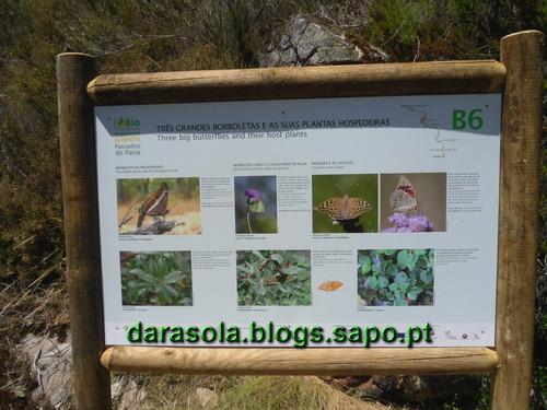 Passadicos_paiva_031.JPG