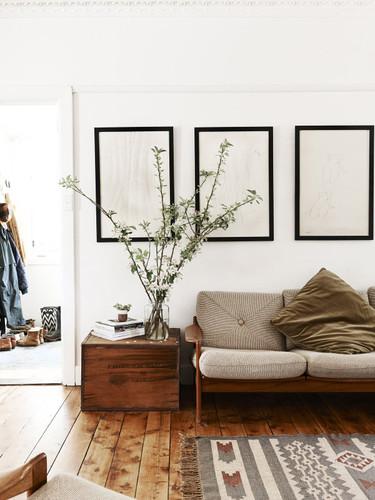 plantas-em-casa-2.jpg