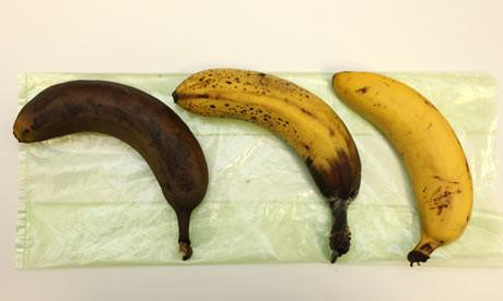 Storing-bananas-001.jpg