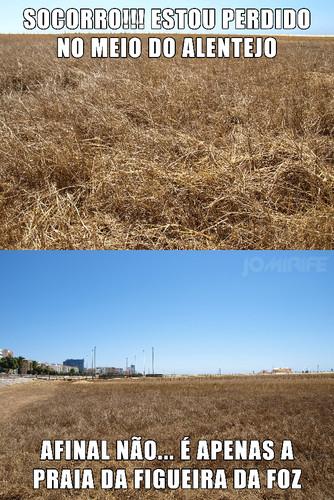 Praia da Figueira da Foz parece um terreno baldio abandonado no meio do Alentejo #meme SOCORRO!!! ESTOU PERDIDO NO MEIO DO ALENTEJO. AFINAL NÃO... É APENAS A PRAIA DA FIGUEIRA DA FOZ