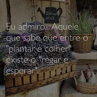 FB_IMG_1464423091153.jpg