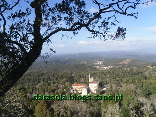 Mata_Bucaco_09.JPG