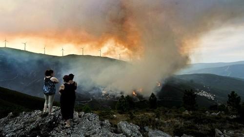Incendios florestais.jpg