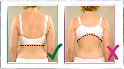 bra-fitting.jpg