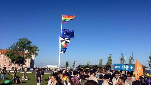 bandeira arco iris ribeira naus 2.jpg