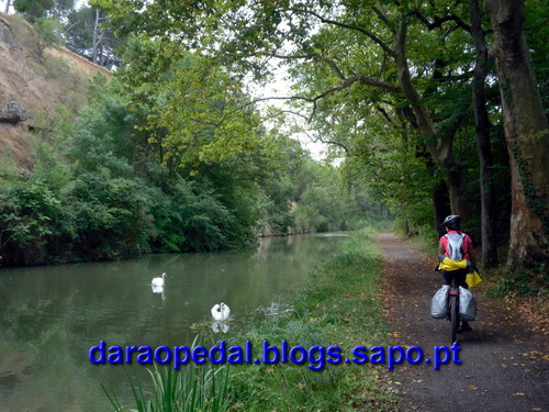 Canal_midi_dia_03_06.JPG