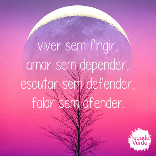 viver2.png