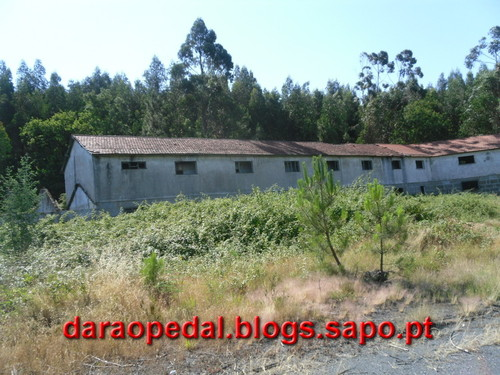 Trilho_Mineiro_12.JPG
