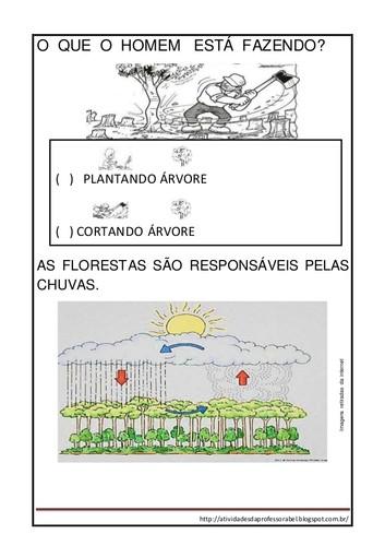 atividades-sobre-desmatamentocincia-2-638.jpg