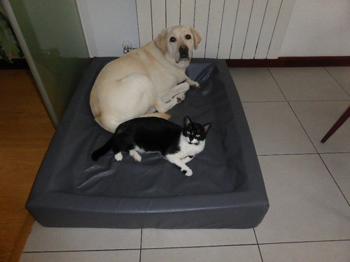 Mica e Tobias.JPG