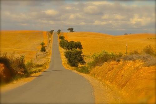 estrada alentejo telefone.jpg