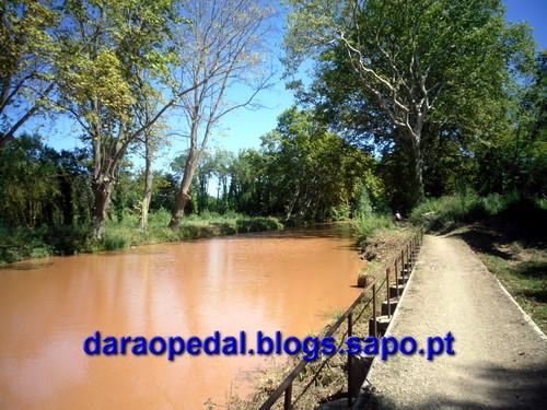 Canal_midi_dia_04_19.JPG