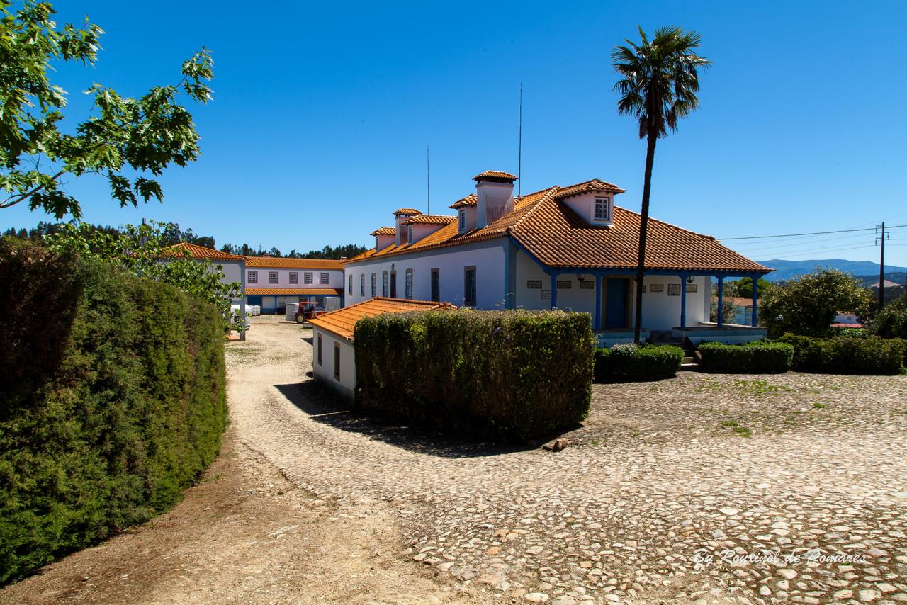 Casa da Carvalha (19)