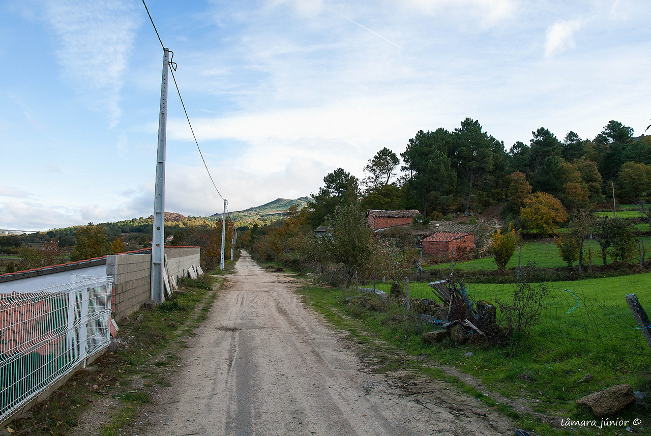 11.- 2010 - Caminhada Linha CP Vila Pouca-Samardã