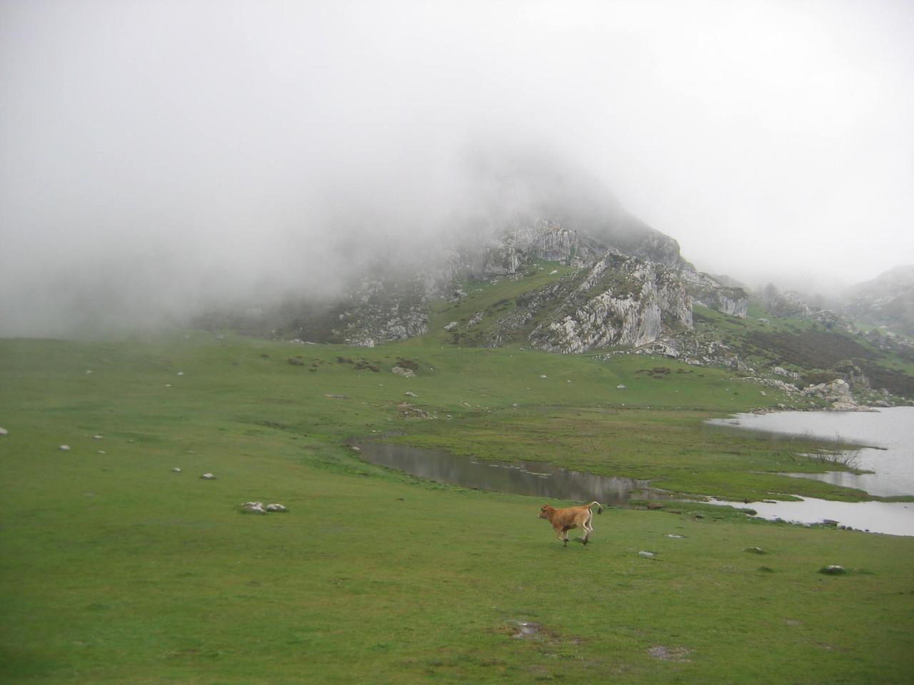 Covadonga-Lago 3.JPG