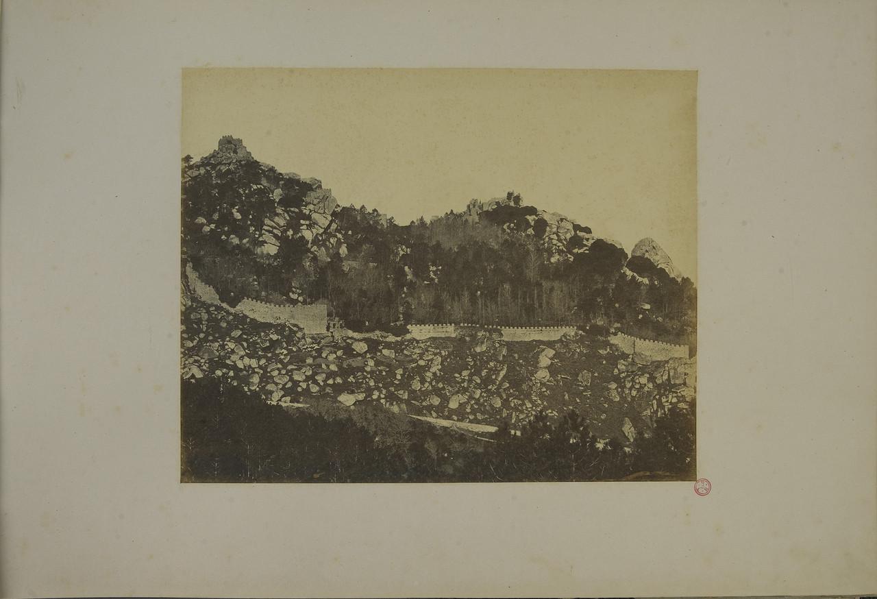 f 4.jpg