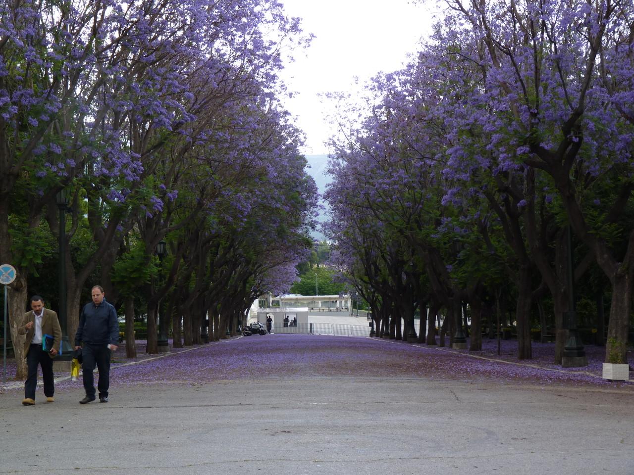 Atenas (431).JPG