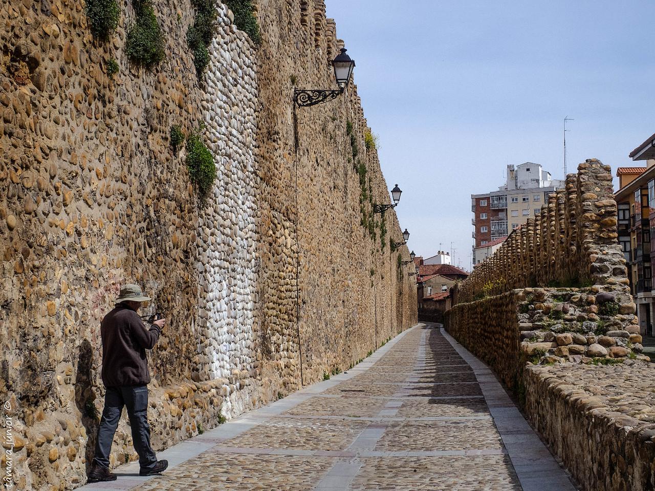21.- 2016 - Camino del Salvador - León (590).jpg