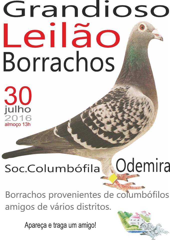 Leilão Odemira.jpg