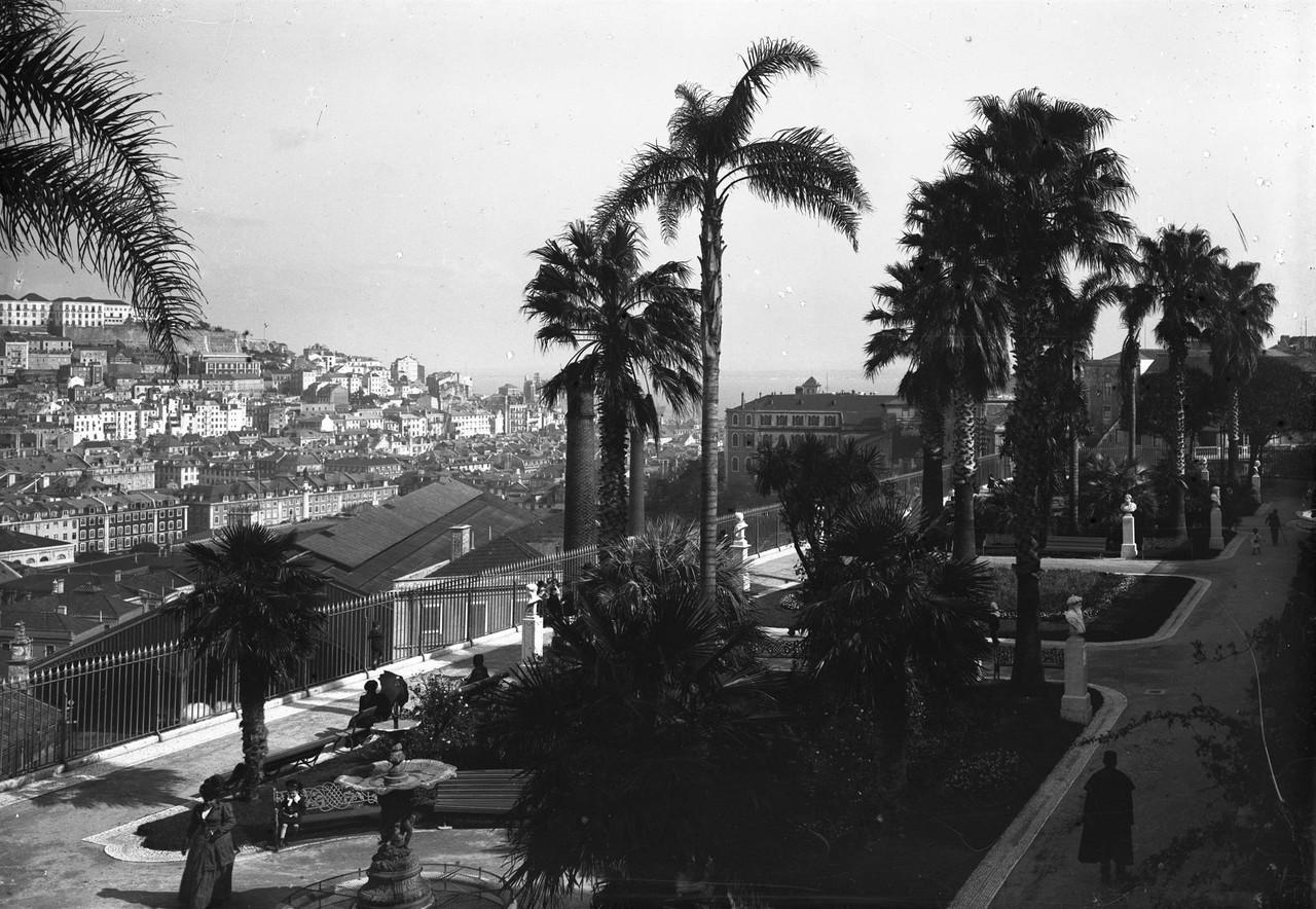 Jardim de São Pedro de Alcântara, foto de Paulo