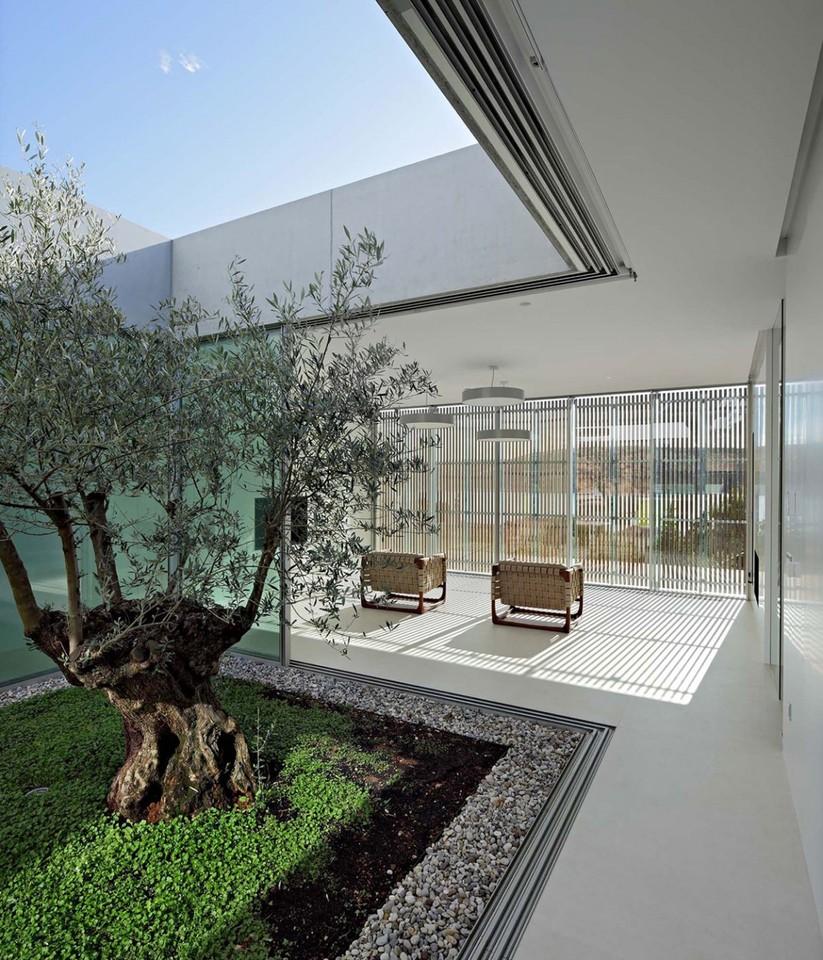 Olive-House-13-1150x1342.jpg