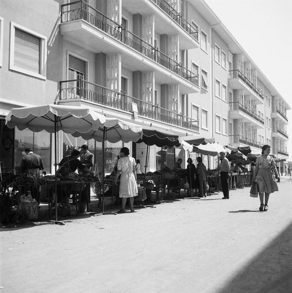 Dia de praça, Alvalade (J.C. Alvarez, 1949)