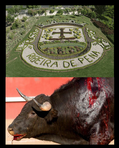 TOURADA.png