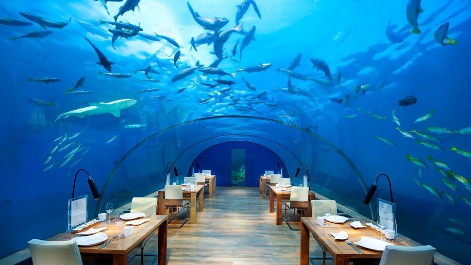005276-16-Ithaa-Undersea-Restaurant.jpg