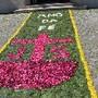 Tapetes Flores Corpo Deus Coura 2013 O
