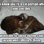 GATOS a dormir.bmp