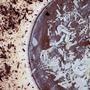 Mousse de Chocolate Branco e Preto.JPG