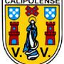 calipolense....jpg