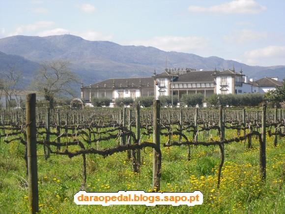GeoBTT_Ecopista_Ponte_Lima_31