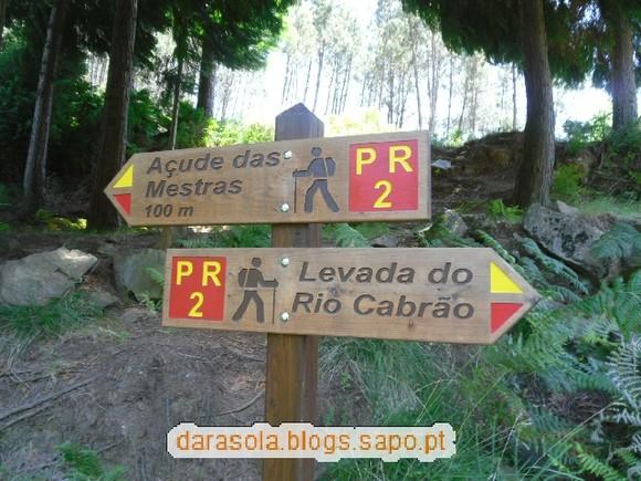 Levada_Piscaredo_38