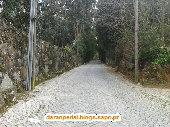 Gaia_Serra_Canelas_Espinho_02