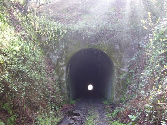 tunel santa catarina