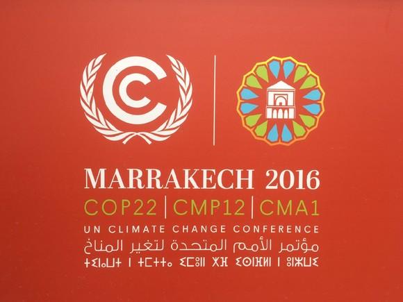 COP22_imagem.jpg