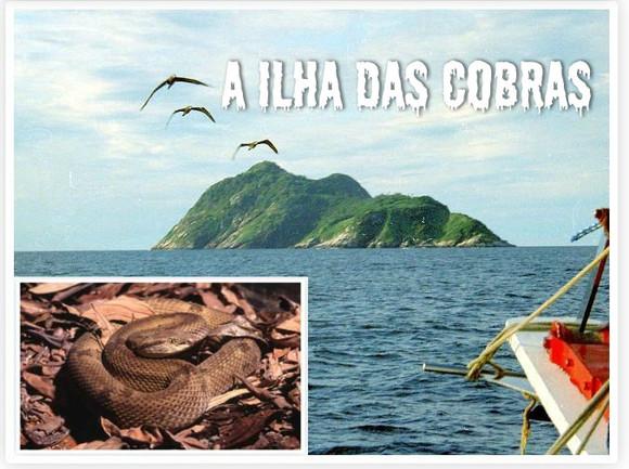 cobras2.JPG