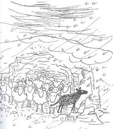 Elizabeth Shaw - A ovelhinha preta 15a.jpg