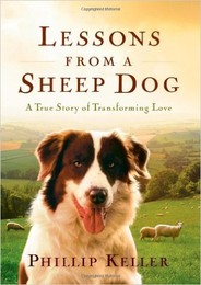 Lessons from a Sheep Dog.jpg