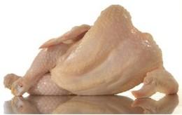 galinha-sexy-NYT-450-20110930.jpg