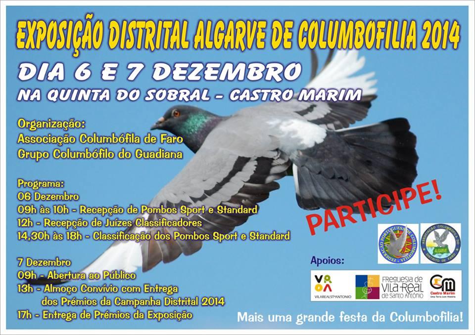 Exposição Distrital Faro.jpg